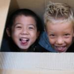 casa-rane-nella-scatola